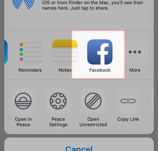 Screenshot to select Facebook as target App for the link generated by Dropbox App on iPhone
